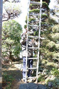 梯子の抑える部分